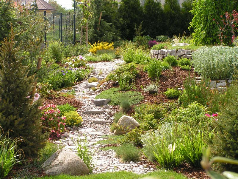 informal Natural garden landscape